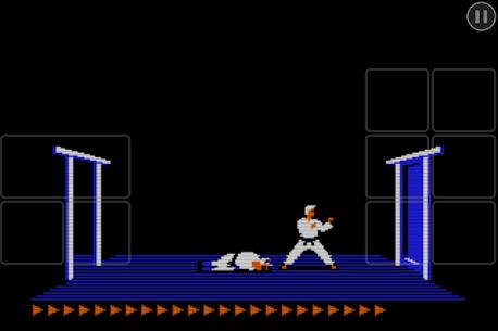 Karateka Classic 5