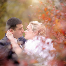 Wedding photographer Mariya Khorzunova (maria-sky). Photo of 14.11.2016