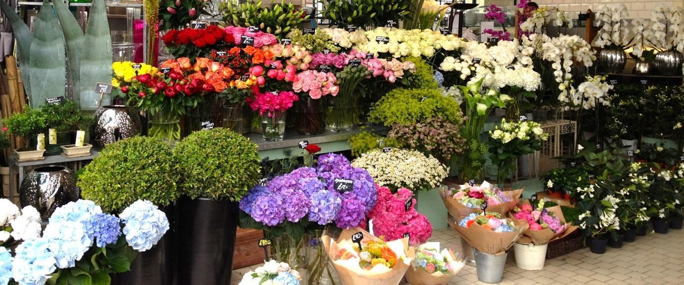 Kết quả hình ảnh cho shop hoa tươi chuyên nghiệp