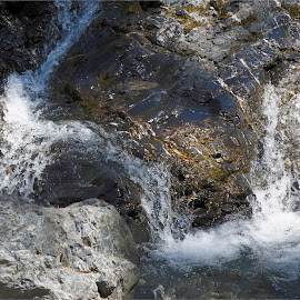 Livigno, Lombardy, Italy by Serguei Ouklonski - Nature Up Close Rock & Stone ( rock - object, alps, shadow, foam, purity, scenic, summer, rock, stream, day, italy, flow, scenics, no person, alp, motion, rapids, nature, cascade, wet, beauty in nature, water, power in nature, stone, environment, close-up, outdoors, daylight, alpine, geological formation, tranquility, lombardy, travel, splash, no people, landscape )