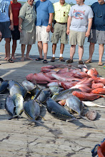 Photo: another group's catch. they went out for an overnight.