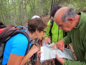 Photo: Vérifications de parcours en forêt
