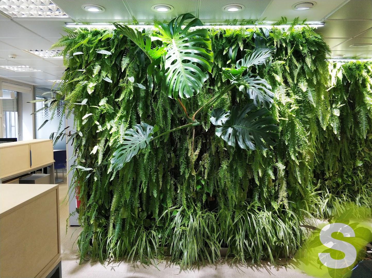 Jardín vertical en el interior de unas oficinas en madrid