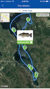 Fishency - náhled