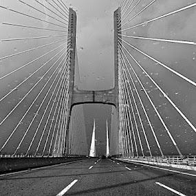 Vasco da Gama Bridge, 2013 by Esmi Baúto - Buildings & Architecture Bridges & Suspended Structures