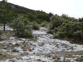 Photo: première neige