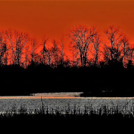 Dawn In The Marsh by Kathy Woods Booth - Landscapes Prairies, Meadows & Fields ( orange, dawn, marshes, reflections, marsh, daybreak )
