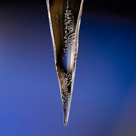 First icicles 2018 by Kevin Adams - Nature Up Close Water