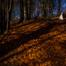 Wedding photographer Andy Casota (CasotaAndy). Photo of 29.10.2018