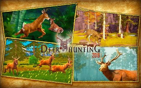 Deer Hunting 19 4