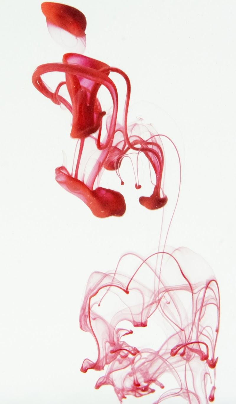 Red Floyd. di Riccardo Ippoliti