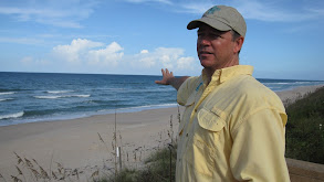 Florida Frenzy thumbnail