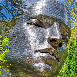 The Face, Paradise by Dave Williams - Artistic Objects Technology Objects ( sculpture park, paraiso, churst, rafael miranda san juan, paradise, fanham, sculpture )