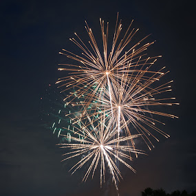 Fireworks by Scott Thiel - Abstract Fire & Fireworks ( explosives, explosion, fireworks, night, light,  )