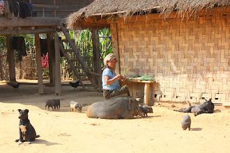 Photo: Day 247 - Typical Village Scene  (Laos)
