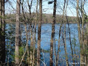 Photo: Walden Pond