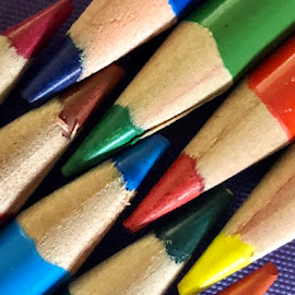 A Dash of Color by Lorna Littrell - Artistic Objects Other Objects ( artistic objects, art, color, pencils, artistic, colorful,  )