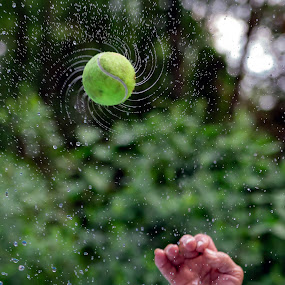 by Chad W - Sports & Fitness Tennis ( water, hand, throw, ball, spinning, green, drops, tennis )