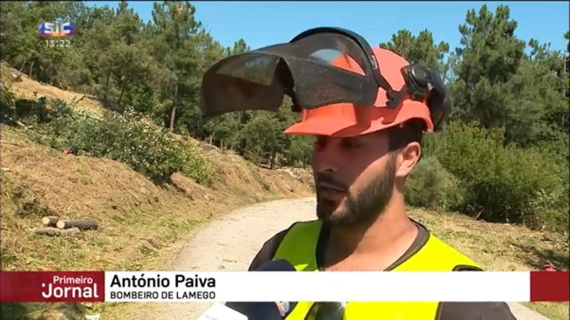 Vídeos - Bombeiros de Lamego fazem trabalhos de limpeza de terrenos