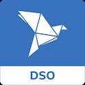 bKash DSO icon