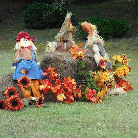 October Scenes by David Jarrard - Public Holidays Halloween ( halloween, fall, scarecrows, decorations, pumpkin patch )