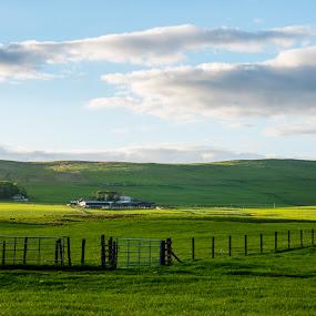 by Fan Leung - Landscapes Prairies, Meadows & Fields