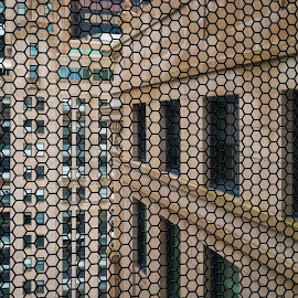 Openings by Jon Kinney - Abstract Patterns