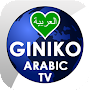 Giniko Arabic TV for Android TV icon