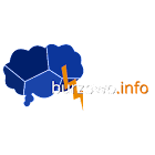 Burzowo.info (lightning map) icon
