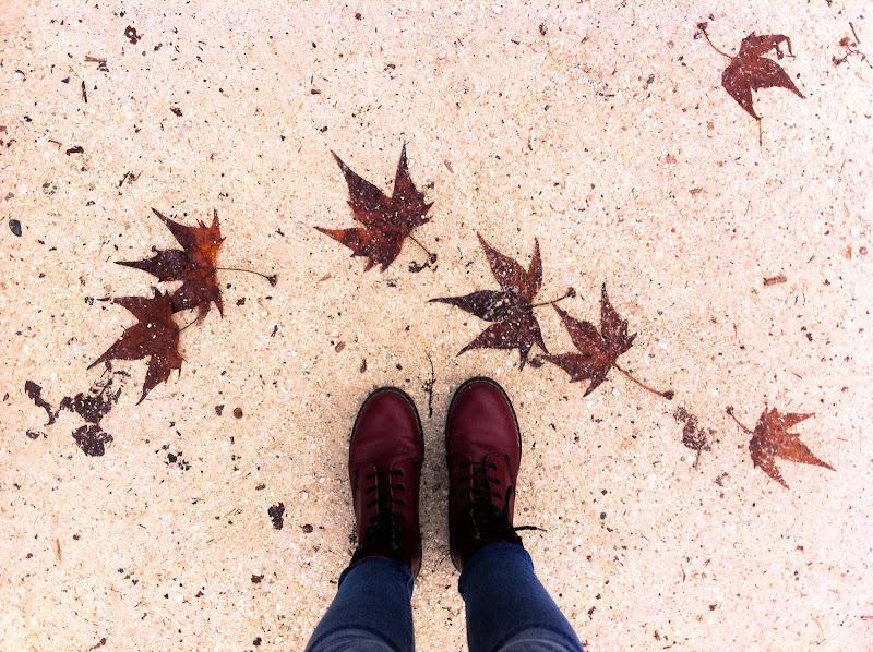 Autumn is coming di pinknana