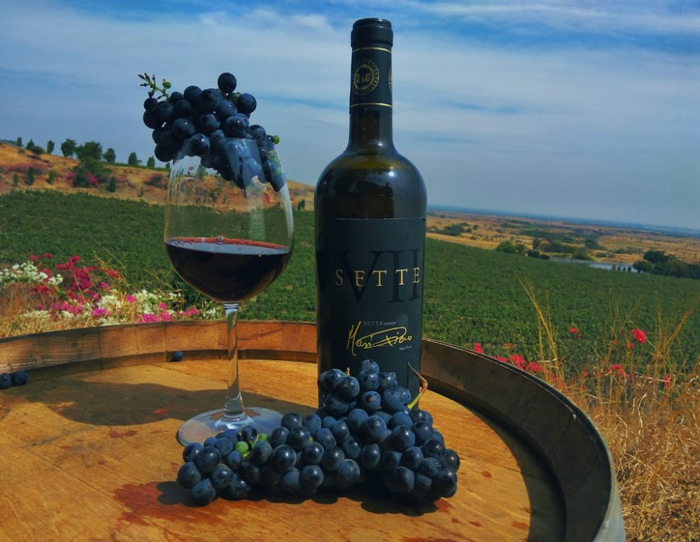 best-red-wines-india-along-prices-FRATELLI_SETTE