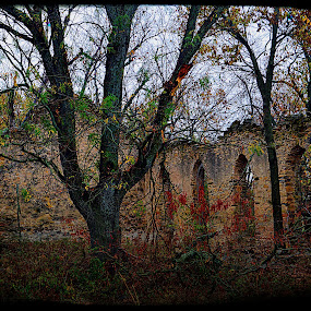 Old Church in a Field by Amber Reeder Crowl - Buildings & Architecture Decaying & Abandoned ( field, old, building, church, pray, past, worship, abandoned )