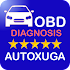 Diagnosis Faults Electronics Cars OBD2