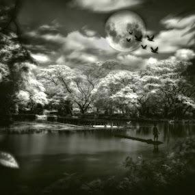 Paradise by Mj Loyola Ganitano - Digital Art Places
