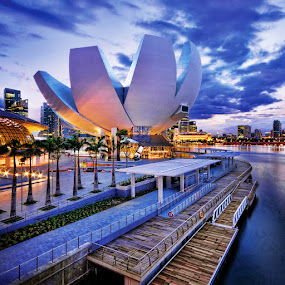 The ArtScience Museum Singapore by William Cho - Buildings & Architecture Other Exteriors ( helix bridge, blue hour, marina bay sands, tourism, artscience museum, cityscape, river front, the shoppes, marina bay, attraction )
