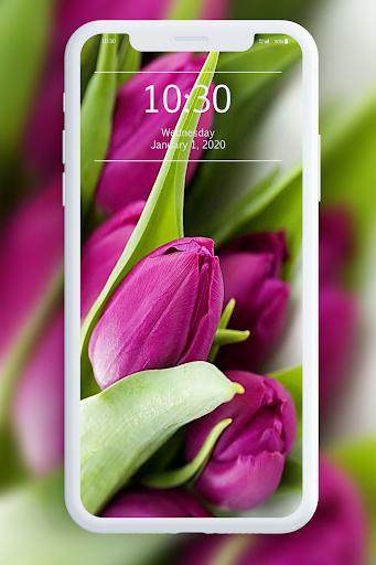 Spring Wallpapers 1.1 screenshots 8
