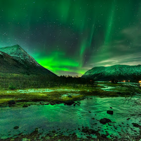 Aurora over godfjord by Marius Birkeland - Landscapes Starscapes ( clouds, water, reflection, sky, aurora )