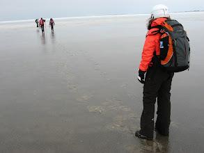 Photo: 017 Voetstappen op het het ijs