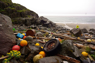 Photo: The usual finds, floats, containers, tires, etc,