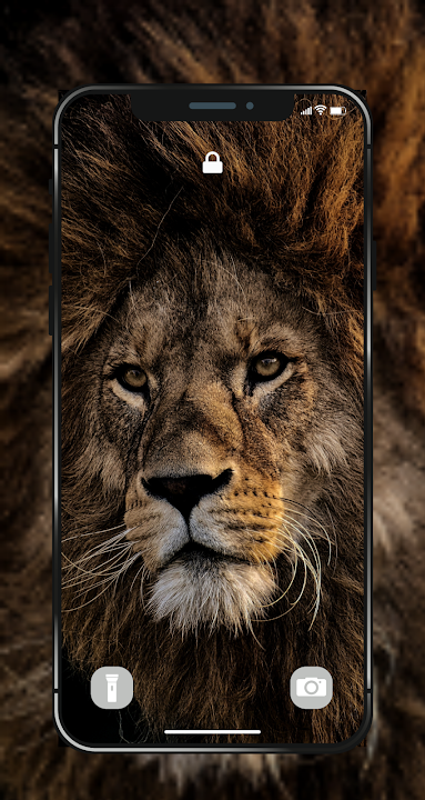 Download Lion Wallpapers Angry 4k Hd Lion Pictures Free For Android Lion Wallpapers Angry 4k Hd Lion Pictures Apk Download Steprimo Com