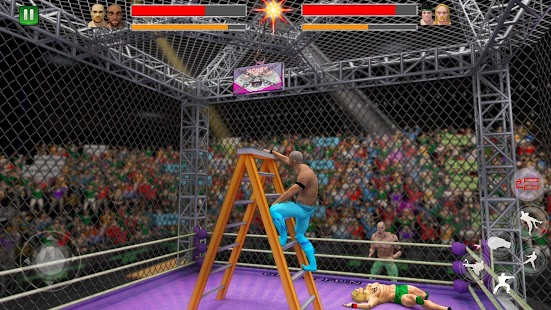 Cage Wrestling Revolution: Ladder Match Fighting - náhled