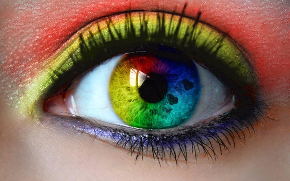 lentilles contact opticiens