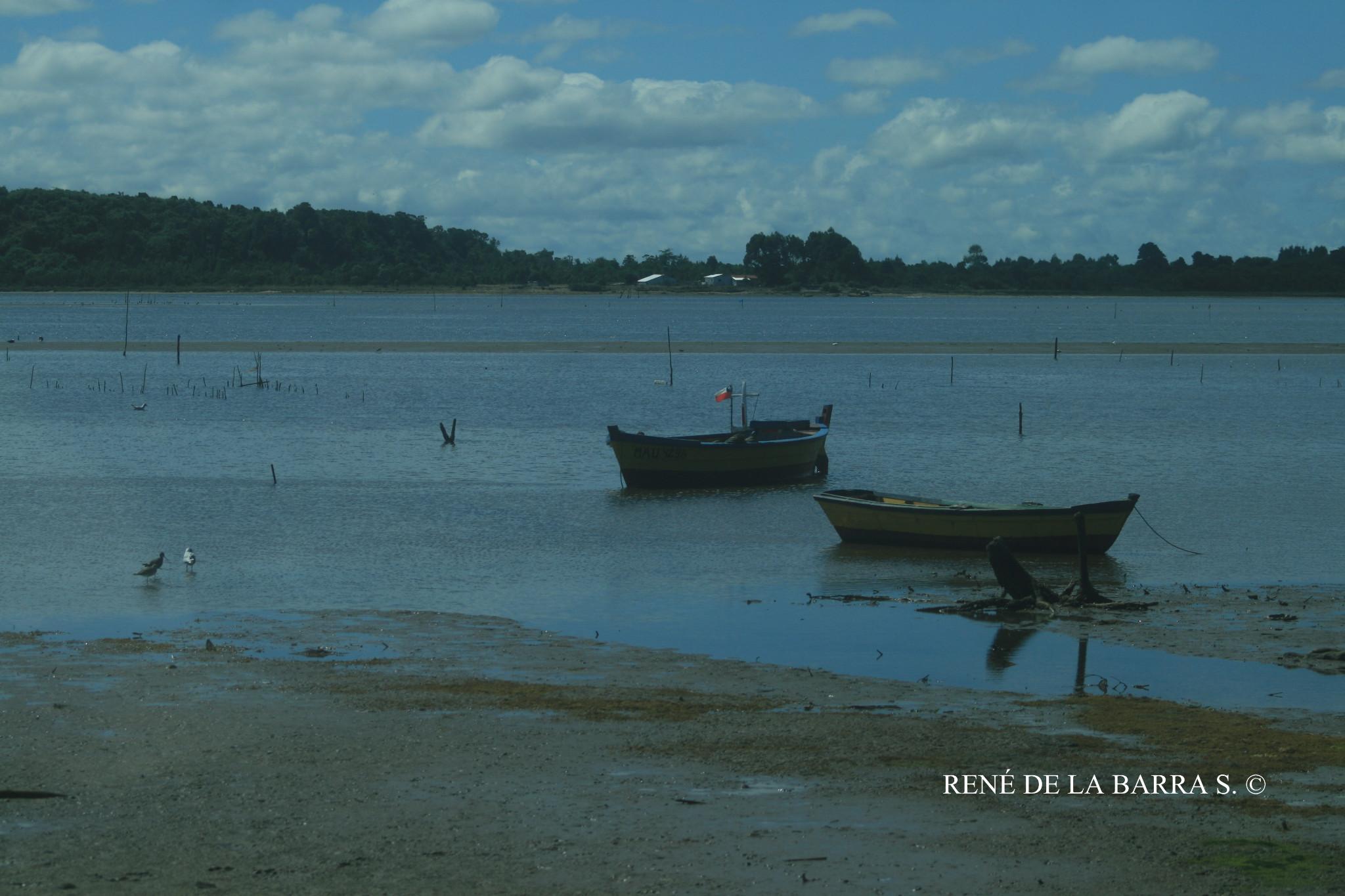 Photo: QUENUIR