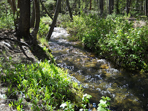 Photo: Salmon River At Its Origin