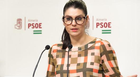 """PSOE sigue señalando los """"recortes"""" en Educación de la Junta"""