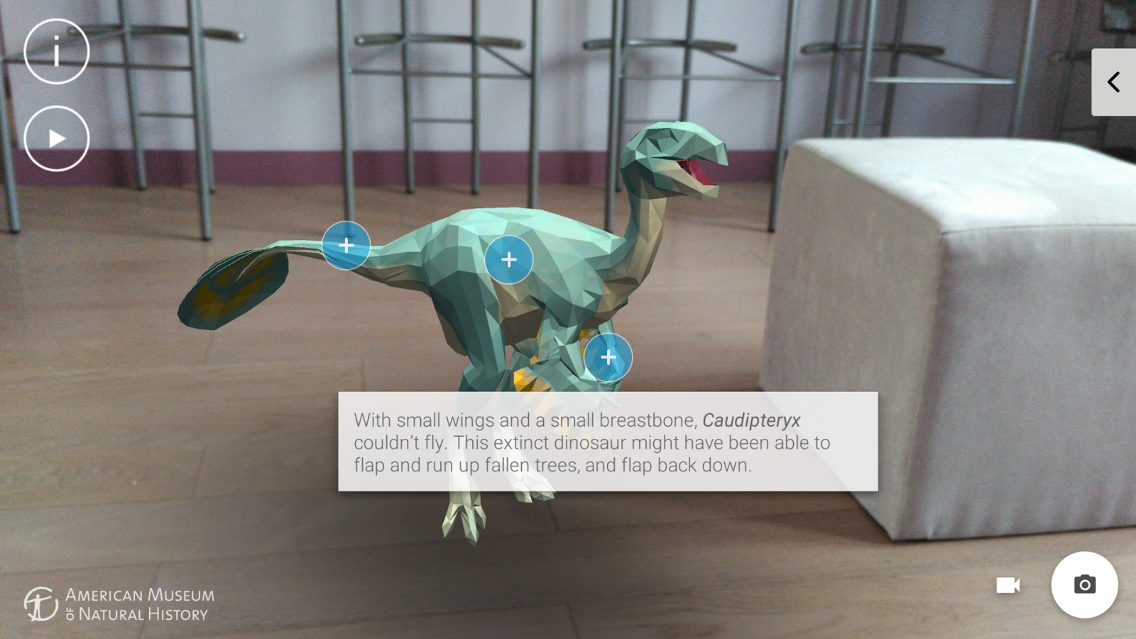 Dinosaurs Among Us- screenshot