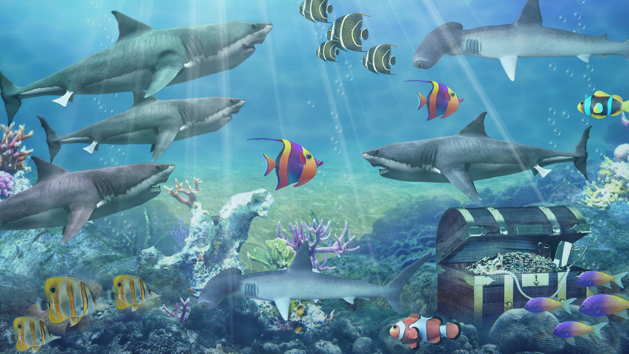 Shark aquarium live wallpaper android apps on google play for Aquarium 30l combien de poisson rouge