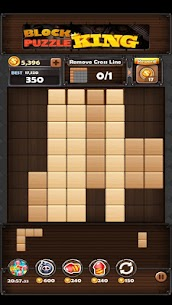 Block Puzzle King Mod Apk: Wood Block Puzzle 2