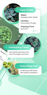 PictureThis: Identify Plant, Flower, Weed and More 3