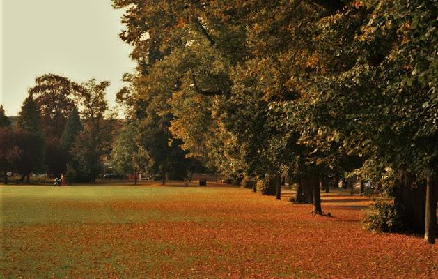 """""""Si sta come d'autunno.."""" di Nemesis"""